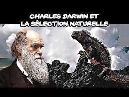Charles Darwin & la sélection naturelle