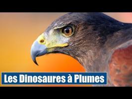 Les Dinosaures à plumes (conférence) - IRL