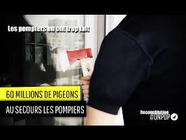 60 millions de Pigeons : les pompiers en font trop