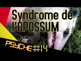 Le syndrome de l'opossum - PSYCHE #14