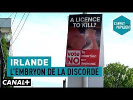 Irlande : L'embryon de la discorde - L'Effet Papillon – CANAL+