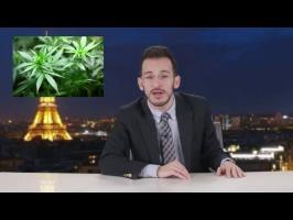 La légalisation du cannabis en France - Cyrusly
