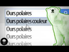 Les ours blancs vont-ils changer de couleur ? - Ctrl+F #3