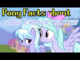 Pony Facts about Cloud Chaser and Flitter