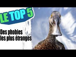 Le top 5 des phobies les plus étranges