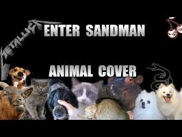 Metallica - Enter Sandman (Animal Cover)