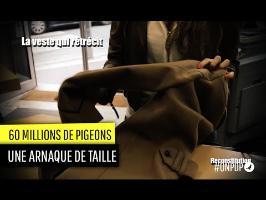 60 millions de Pigeons : une veste rétrécie