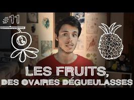 DBY #11 - En bref, les fruits sont des ovaires dégueulasses