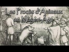 Les Procès d'Animaux au Moyen-Âge !