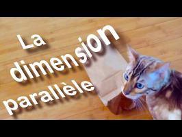 La dimension parallèle
