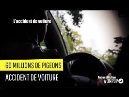 60 millions de Pigeons : l'accident de voiture