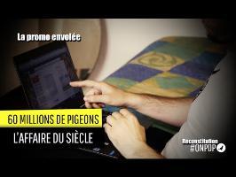 60 Millions de Pigeons : la promo envolée