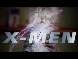 X-MEN (Cute Kitten Version)