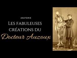 Anatomie : Les fabuleuses créations du Docteur Auzoux