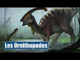 les Ornithopodes - IRL