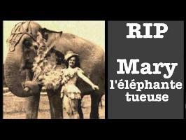 RIP#3 - Mary la meurtrière