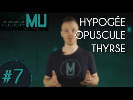 Code MU #7 - HYPOGÉE, OPUSCULE, THYRSE