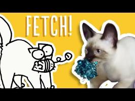 Cats That Play Fetch - Simon's Cat | Cat Snaps