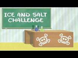 La vérité derrière l'Ice ❄️ and Salt Challenge #LMS n°11 ????