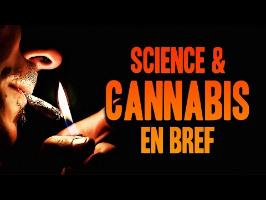 SCIENCE & CANNABIS EN BREF !