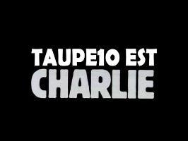 TOP 10 des Unes de Charlie Hebdo de 2014