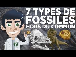 7 types de fossiles hors du commun
