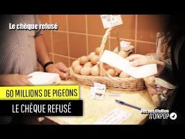 60 Millions de Pigeons : le chèque refusé