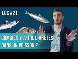 Combien y-a-t'il d'arêtes dans un poisson ? LQC #21