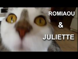 Romiaou & Juliette