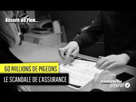 60 millons de Pigeons : assuré de rien