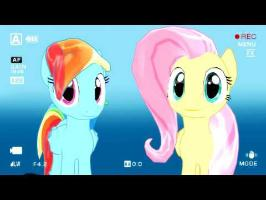 Message From Fluttershy and Rainbow Dash