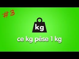 Un kilogramme pèse 1 kg - SI - 03