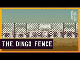 Australia's 3,488 Mile Long Fence