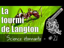 La fourmi de Langton — Science étonnante #21