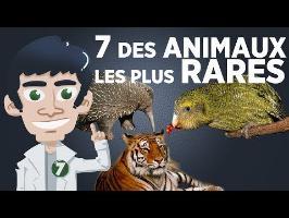 7 des animaux les plus rares