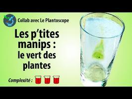 [PtitesManips] Le vert des plantes - avec le Plantoscope