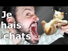 Minute Papillon #72 Je hais les Chats (feat e-penser)