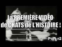 LA PREMIÈRE VIDÉO DE CHATS DE L'HISTOIRE ! - PVR #2