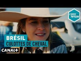 Culottes de cheval - L'Effet Papillon du 10/09 – CANAL+