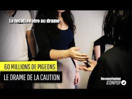 60 Millions de Pigeons : le drame de la location