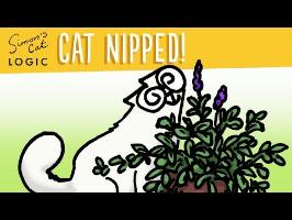 Why do cats go crazy for Catnip? - Simon's Cat | CAT LOGIC