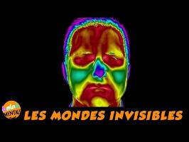 Voir dans l'invisible / infra rouge et micro onde