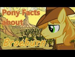 Pony Facts about Braeburn