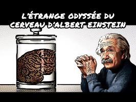 L'étrange odyssée du cerveau d'Albert Einstein
