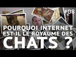Pourquoi internet est-il le royaume des chats