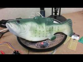 Big Mouth Billy Bass + Alexa = Genius