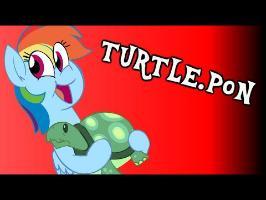 Turtle.PON