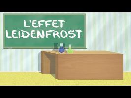 LMS n°6 : l'effet Leidenfrost