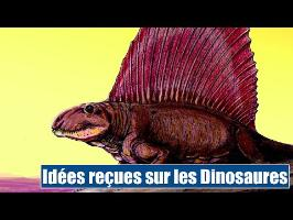 D'autres préjugés sur les Dinosaures - IRL
