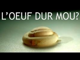 L'OEUF DEMI MOLLE - Slow Mo pour les n00bs